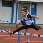 Classement : Second Concours Photos - 2011
