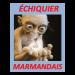 Echiquiers Marmandais